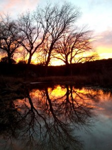 Photo of sunset reflected in water, taken by Svenja